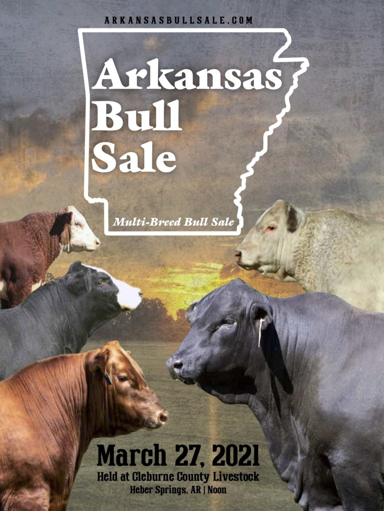 Arkansas Bull Sale 2021 catalog cover