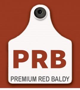 Premium Red Baldy Logo