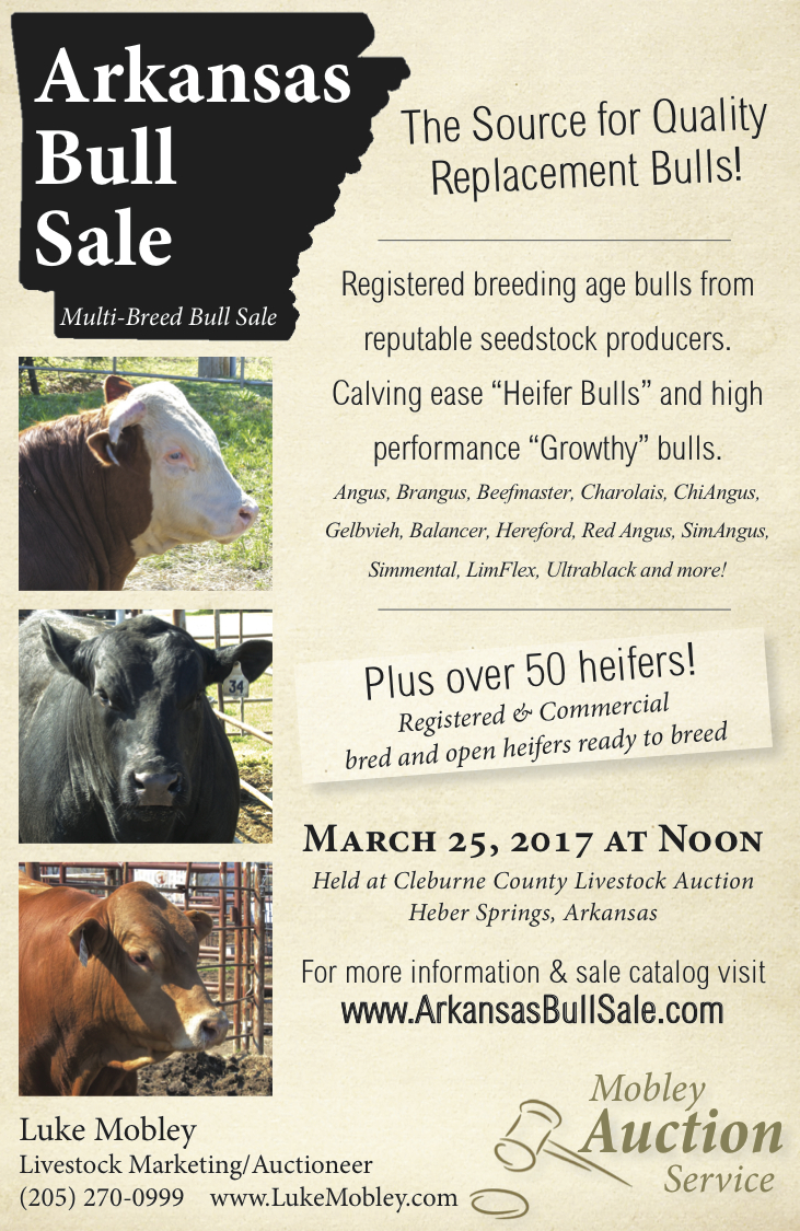 Arkansas Bull Sale 2017 Ad 1:2 pg color