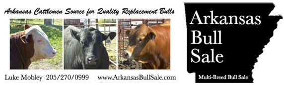 arkansas-bull-sale-2017-ad